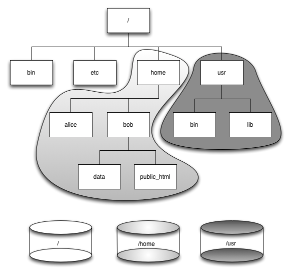 File System Tree