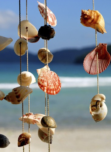 Several sea shells on strings.