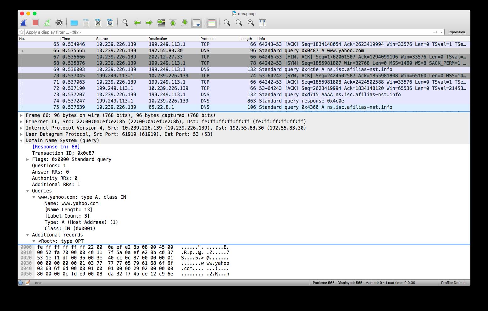 DNS tcpdump by example